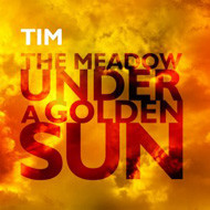 TIM  the meadow under a golden sun